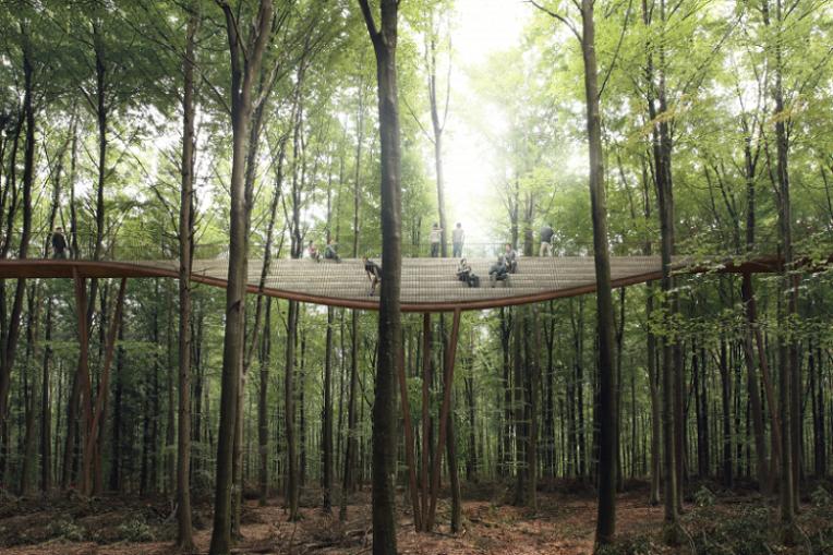 treetop--denmark-2